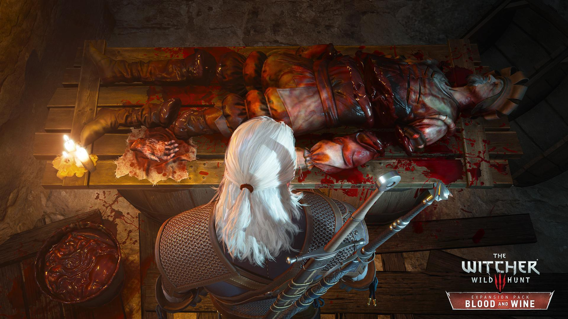The Witcher 3: Wild Hunt - Gaming - Wasting Your Life